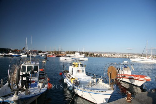 Traditional fishing boats in Paphos harbour